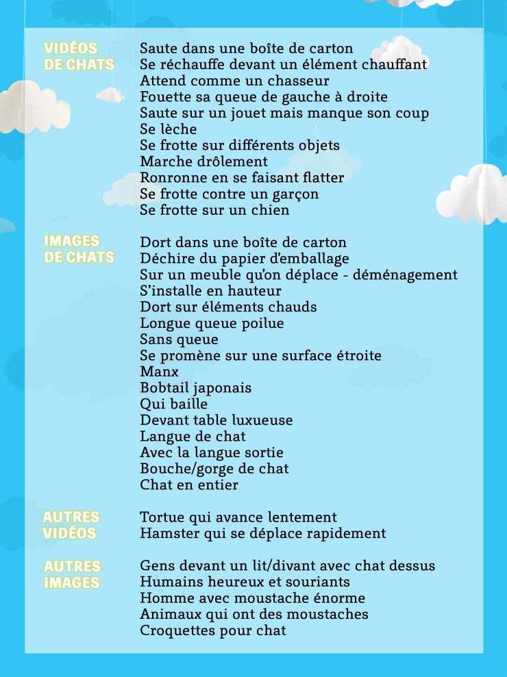 Chattention_Explique_FRA