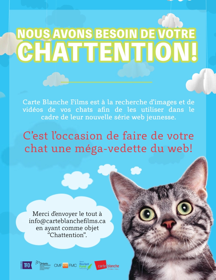 Chattention_FRA-VF